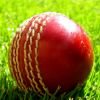20/20 Cricket for Hail Ale fund